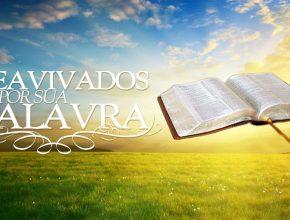 A Bíblia Sagrada contém biografias, crônicas, poesias, cartas, narrativas históricas e profecias.