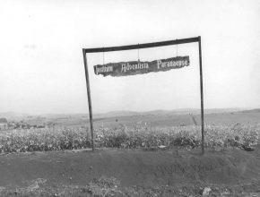 """O local escolhido para o """"Novo IAP"""" foi a fazenda Santa Maria, nas terras férteis de Ivatuba - PR"""