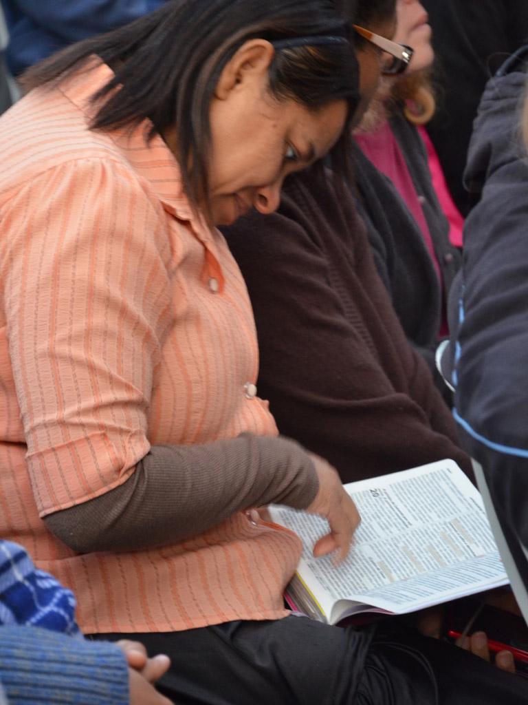 Em busca de consagração e renovação de fé, centenas de pessoas frequentam o culto da mata.