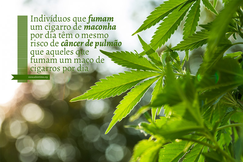 fumar-maconha-causa-cancer