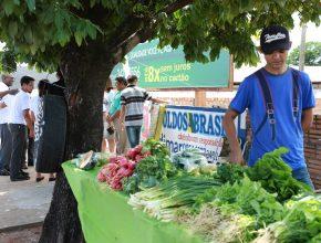 Cleriston Souza de Jesus, vendedor de legumes e verduras em Rondonópolis, teve alguns vizinhos novos e diferentes no sábado (28)