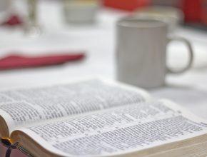 Para adventistas, crescimento da distribuição de Bíblias é ainda mais importante quando aumenta o estudo sistemático do livro