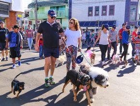 Mais de 400 cães percorreram um trajeto que durou cerca de 40 minutos