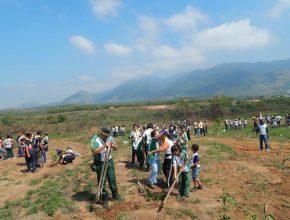 200 desbravadores participaram do plantio de árvores no Parque do Gericinó.