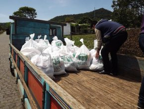 Em cada cesta doada havia 33 quilos de alimentos.