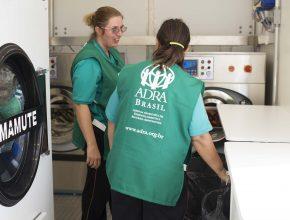 Lavanderia industrial móvel tem capacidade para lavar 40kg de roupas por hora (Foto: Anne Seixas)