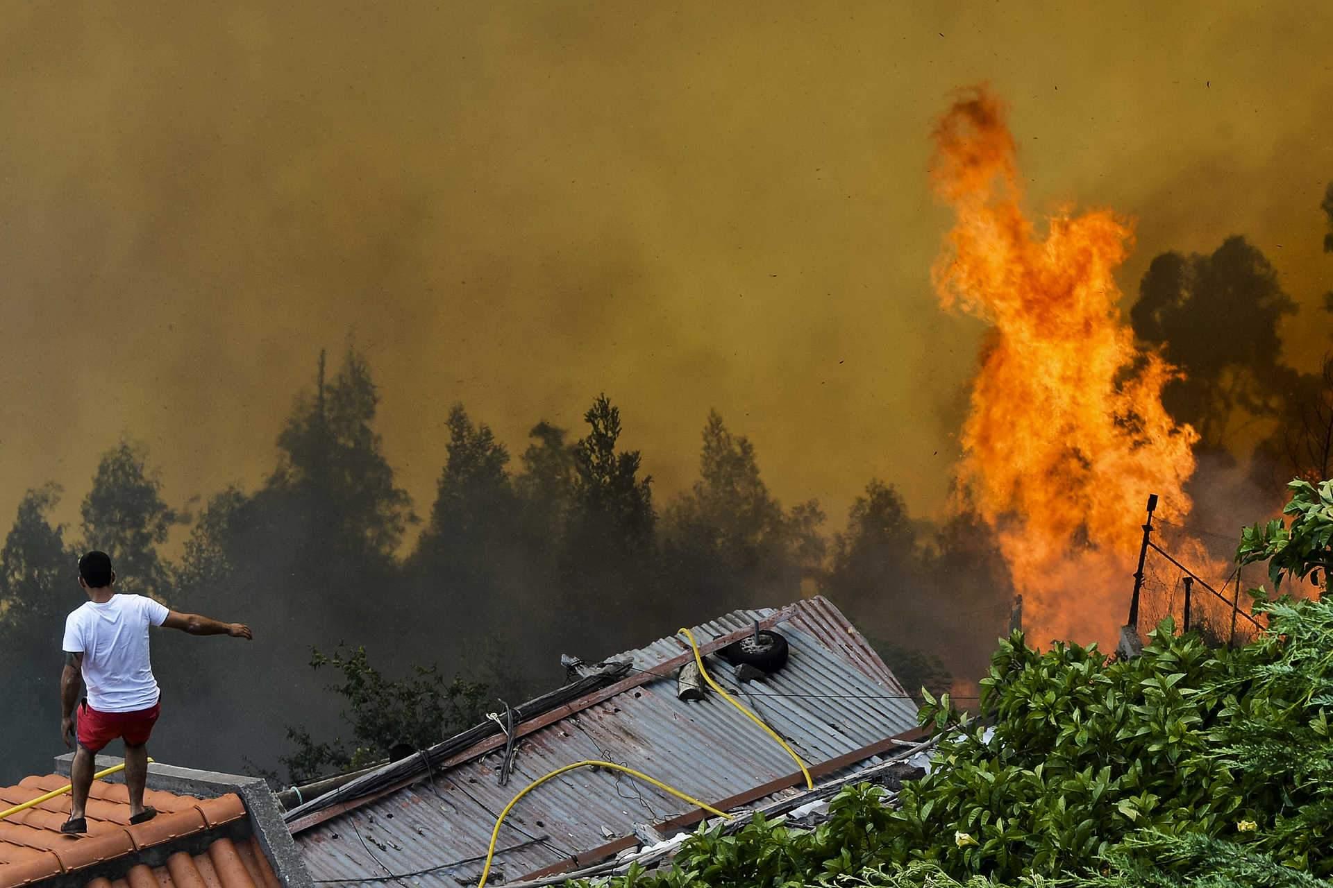 Fogo se alastrou já para regiões norte e centro de Portugal em época de verão europeu. Crédito: www.dn.pt