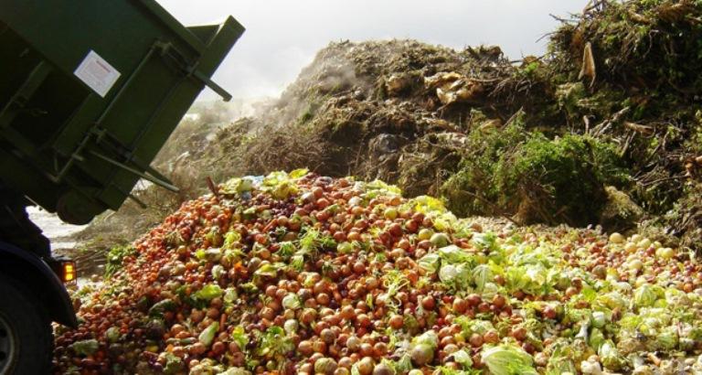 desperdicio_alimento_reproducao