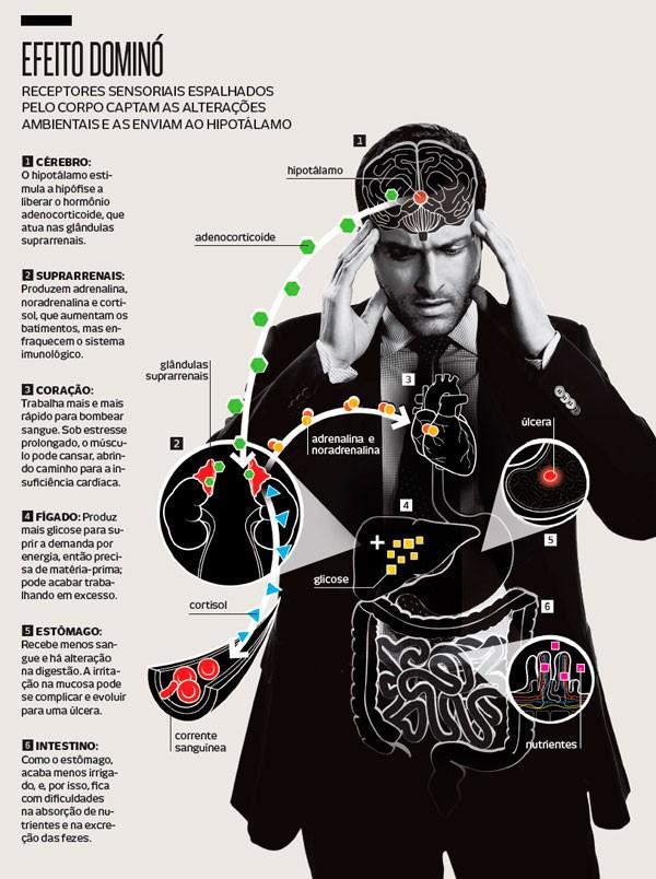doutor-em-psicologia-afirma-emocoes-e-lado-fisico-sempre-estao-conectados1