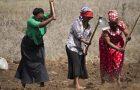 """""""Evangelismo com vegetais"""" capacita mulheres a serem autossuficientes"""
