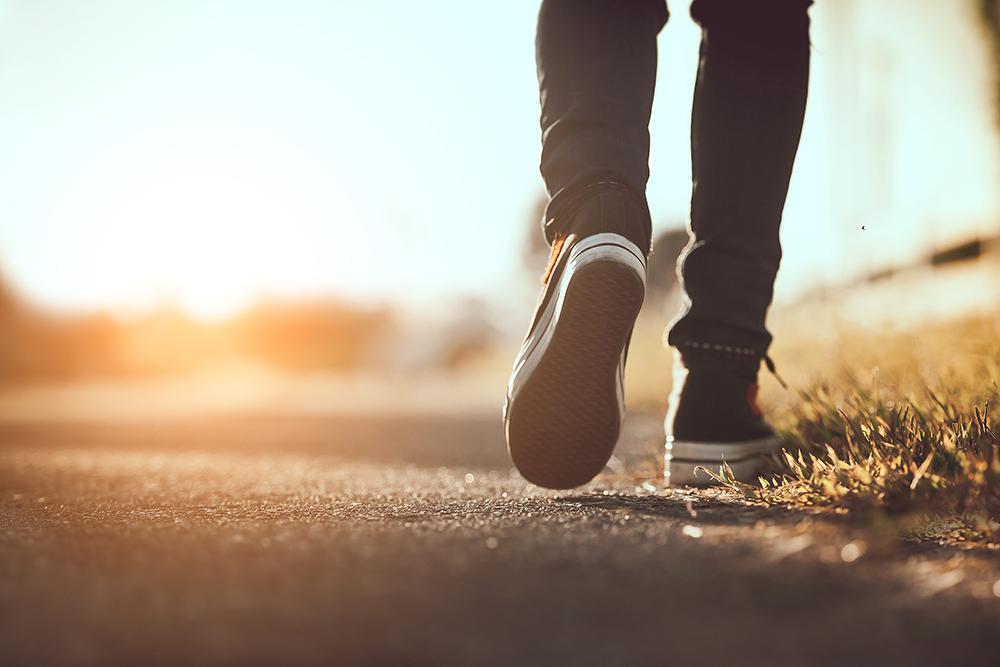 Qual é o caminho a Cristo? - Notícias Adventistas