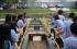 Alunos realizam ações de conscientização no Dia Mundial da Água
