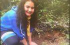 Desbravadores realizam plantio de mudas de árvores em Presidente Getúlio-SC