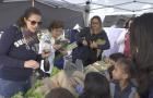 Moradores trocam materiais recicláveis por produtos orgânicos