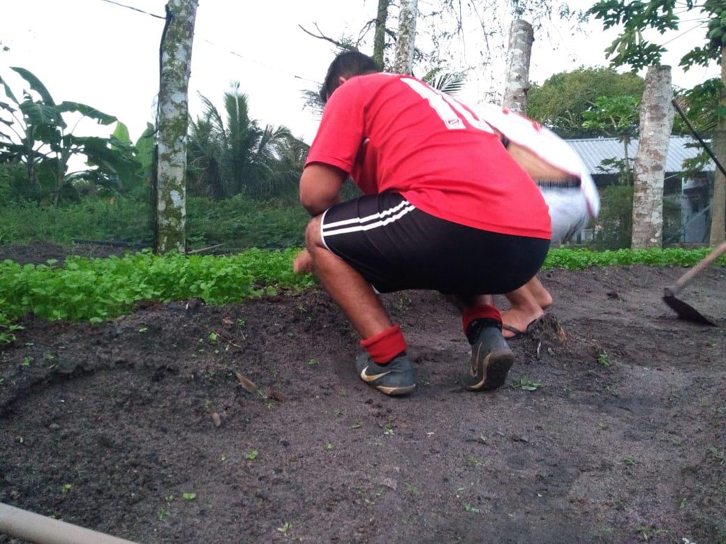 horta