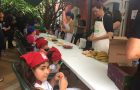 Escola Cristã de Férias aborda diferentes temas em São Paulo