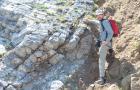 Instituto adventista de estudos geológicos tem novo diretor