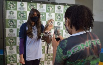 Estudante segura coruja durante aula sobre Meio Ambiente.