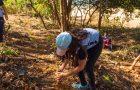 Alunos plantam 100 mudas de árvores às margens do Rio Doce em Colatina