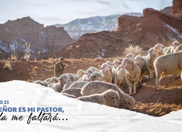 Salmo 23 – El Señor es mi Pastor, nada me faltará…