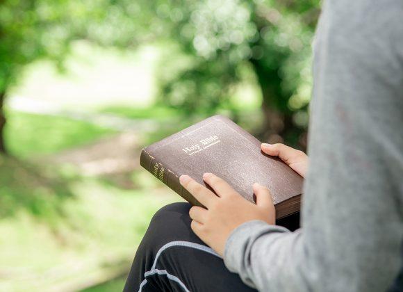 A Devoção dos Lideres Espirituais