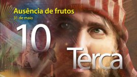 31.05.2016 - Ausência de frutos - terça-feira