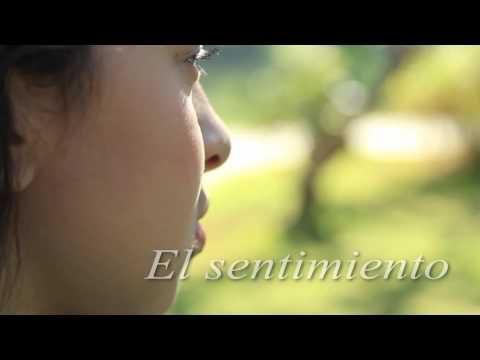 Inclusión (Rompiendo el Silencio) Iglesia Adventista