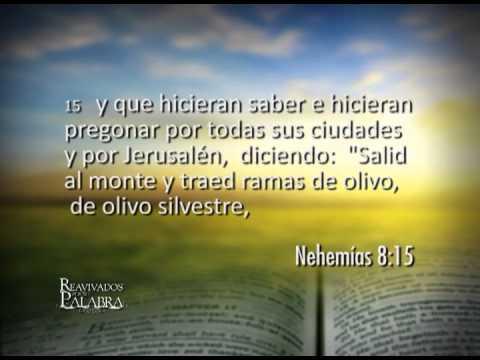 Nehemías 8 – Esdras lee el libro de la Ley frente a todo el pueblo. 11 de Junio de 2013.