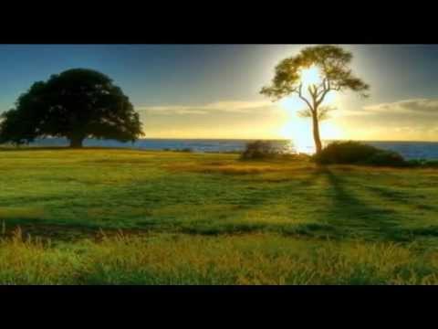 Tema 14: El verdadero día de reposo – Serie La Biblia Habla