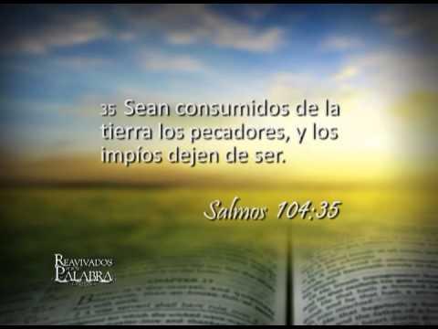 Salmo 104 – Reavivados por su Palabra – 19/11/2013