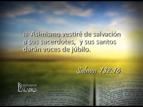 Salmo 132 – Reavivados por su Palabra – 17/12/2013