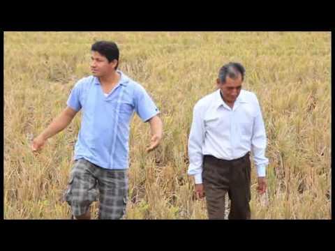 07/Jun. Probad y Ved 2014: La cosecha 1º parte