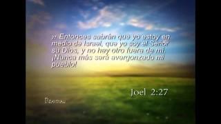 Joel 2 – Reavivados por su Palabra – 12/09/2014