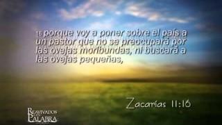 Zacarias 11 – Reavivados por su Palabra – 25/10/2014