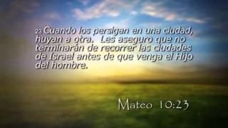 Mateo 10 – Reavivados por su Palabra – 11/11/2014