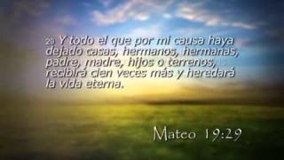 Mateo 19 – Reavivados por su Palabra – 20/11/2014