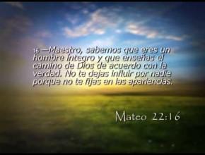 Mateo 23 – Reavivados por su Palabra