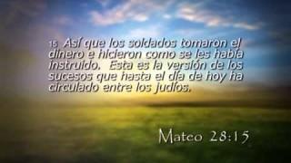 Mateo 28 – Reavivados por su Palabra – 29/11/2014