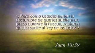 Juan 18 – Reavivados por su Palabra #RPSP