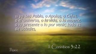 1 Corintios 3 – Reavivados por su Palabra #RPSP