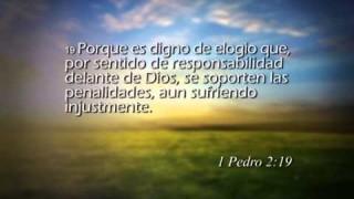 1 Pedro 2 – Reavivados por su Palabra #RPSP