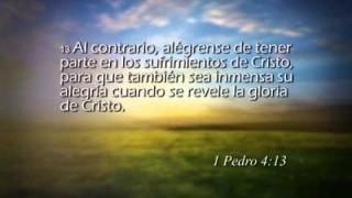 1 Pedro 4 – Reavivados por su Palabra #RPSP