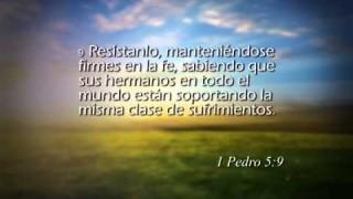 1 Pedro 5 – Reavivados por su Palabra #RPSP