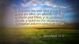 Apocalipsis 11 – Reavivados por su Palabra #RPSP
