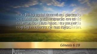 Génesis 6 – Reavivados por su Palabra #RPSP