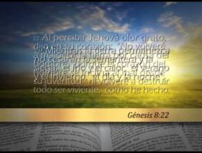 Génesis 8 – Reavivados por su Palabra #RPSP