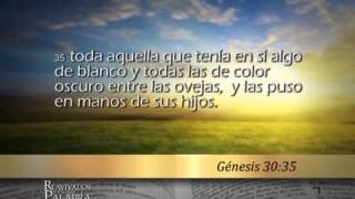Génesis 30 – Reavivados por su Palabra #RPSP