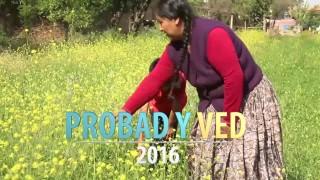 Trailer lanzamiento Probad y Ved 2016
