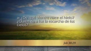 Job 38 – Reavivados por su Palabra #RPSP