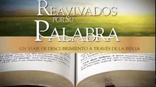 Salmos 8 – Reavivados por Su palabra #RPSP